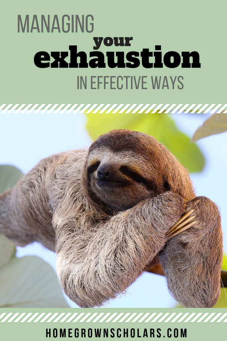 How to Manage Your Exhaustion in Effective Ways