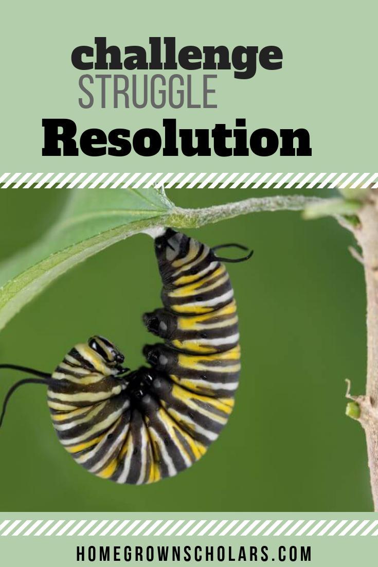 Challenge - Struggle - Resolution